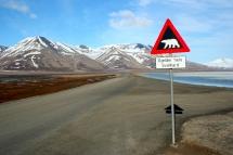 Svalbard - Norvège