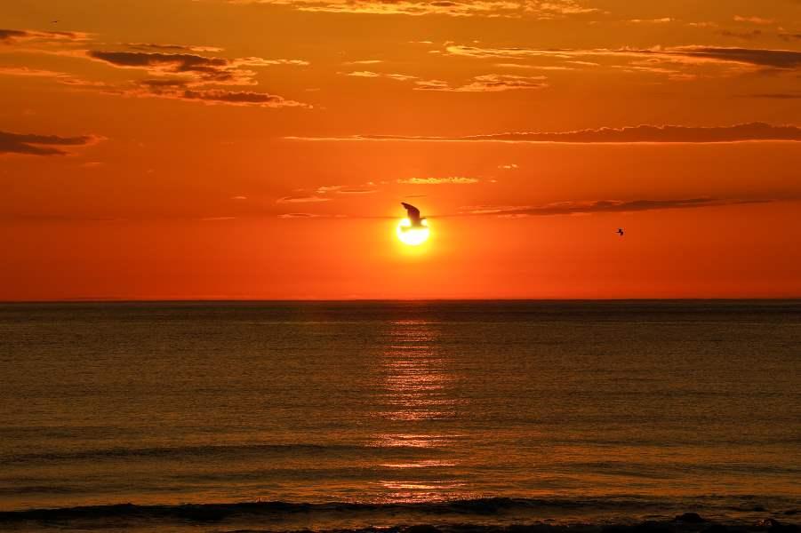 midnight sun norway