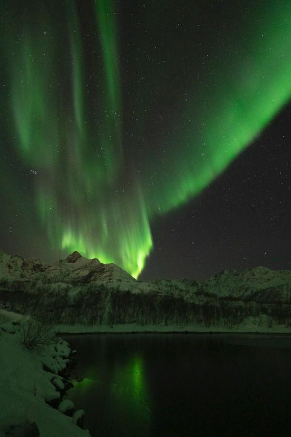 aurores boréales iles lofoten