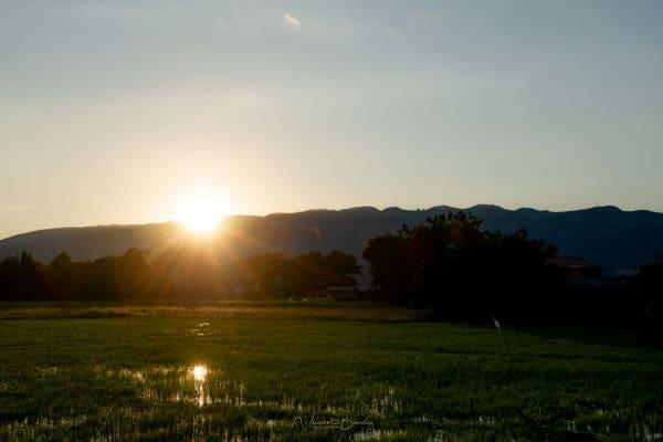 Coucher de soleil rizières lac inle Birmanie