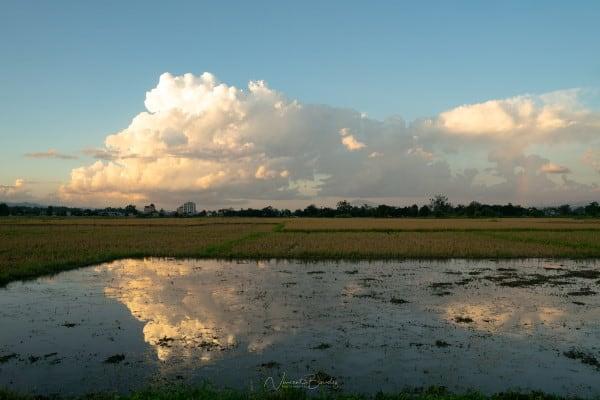 réflexion nuages rizières lac inle Birmanie