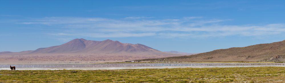 Atacama au Chili salar de Tara | Blog Vincent Voyage