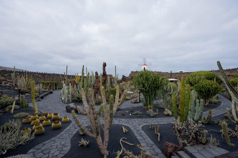 Jardin de cactus Lanzarote aux Iles Canaries