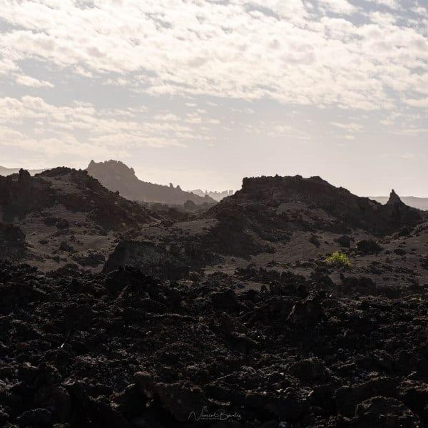Champs de lave de Lanzarote aux Iles Canaries