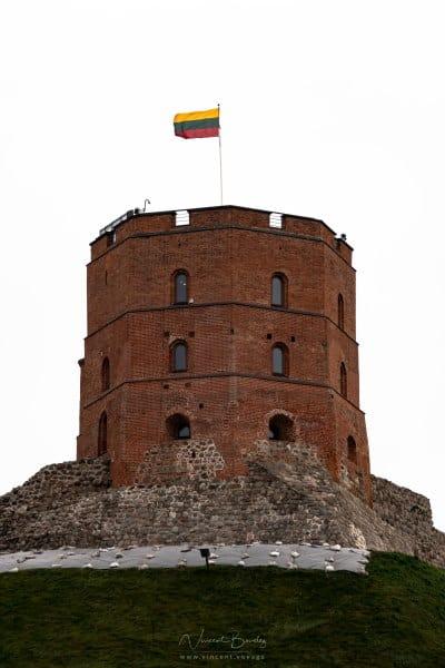 la Tour Gédiminas à Vilnius en Lituanie