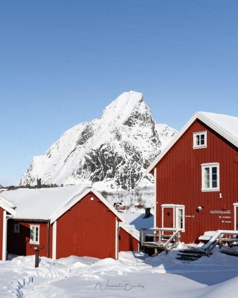 maisons rouges village Reine iles lofoten en norvege