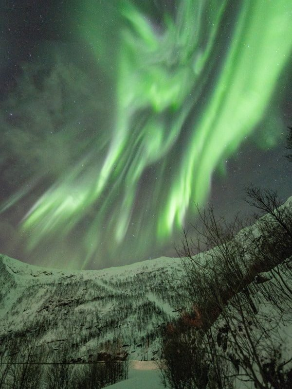 Aurores boréales Senja en Norvège