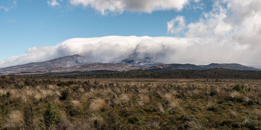 Desert Rangipo Route Tongariro Nouvelle Zélande | Blog Vincent Voyage