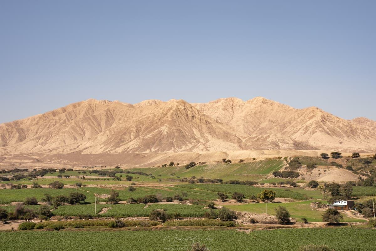 Tambo Colorado à Pisco au Pérou